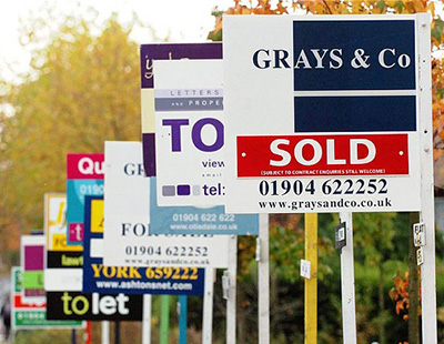 Government ponders bid to ban To Let boards in parts of city