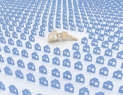 Portfolio landlords hold key to lettings agency returns